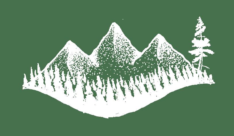 Tall Pine Marketing